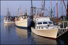 Bowles and Associates also offers marine insurance for commercial fishing and passenger vessels including work boats, tug boats and supply boats anywhere in Louisiana